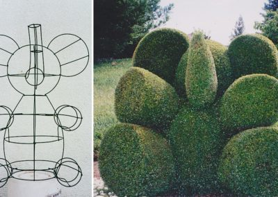 Elephant Topiary: Planted and trained by Barbra Castro!