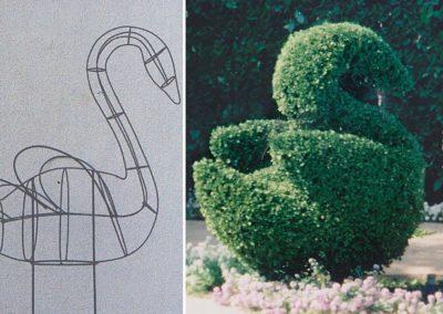 Swan Topiary