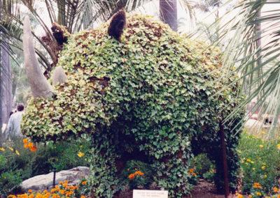 Topiary Rhinoceros