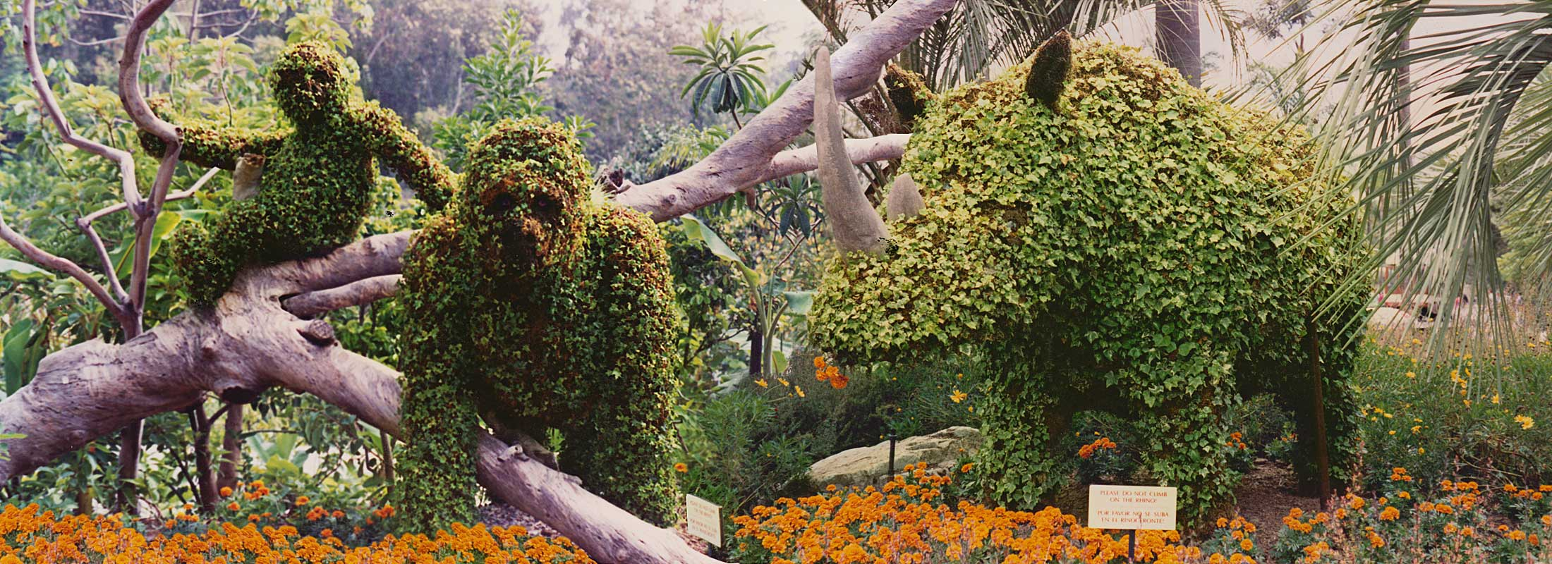 Cliff Finch S Topiary Zoo Making Quality Topiary Frames Since 1981